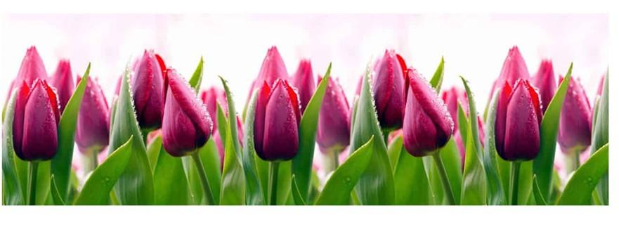 Тюльпаны фартук для кухни